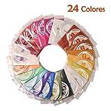 Dewel Mica Powder ,Polvo en Pigmento de Mica 24*10g para teñir Resina Epoxi,Hacer Slimo, Jabón,Bombas de Baño, Maquillaje, Uñas,Cosmético.etc