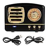 FOLOSAFENAR Tragbarer Bluetooth-Wireless-Subwoofer-Musikplayer für Mini-Retro-Lautsprecher(schwarz)