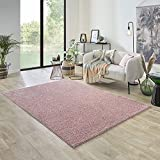 Carpet Studio Ohio Alfombra Salón 160x230cm, Alfombras para Sala, Comedór & Dormitorio, Fácil de Limpiar, Superficie Suave, Pelo Corto - Rosa