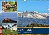 Slowakei - Reise durch das wilde Land (Wandkalender 2021 DIN A3 quer)