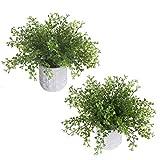 DWANCE 2 Piezas Planta Artificial Hierba Perla con Maceta Planta Artificial...