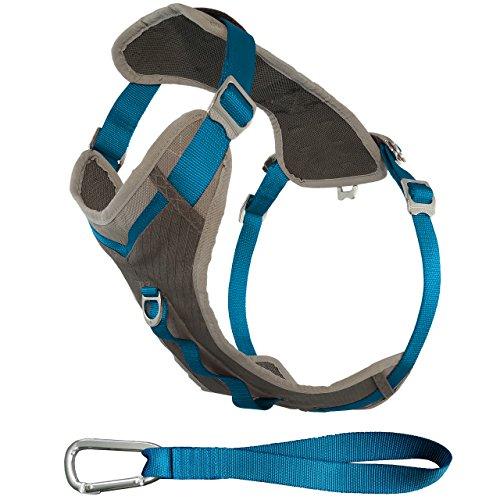 Kurgo Journey (TM) Dog Running Geschirr, Hundegeschirr, Walking Hund wandern Geschirr, Hundegeschirr, X-Large, grau / blau