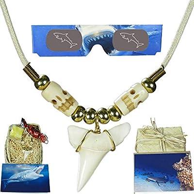 Real Hawaiian Shark Tooth Necklace - Gift Set for Kids, Boys, Girls, Men, Women and Surfers - Bundle Features Hawaiian Gift Box, 3D Shark Glasses, Gift Card, Fun Facts Card and Hawaiian Candy