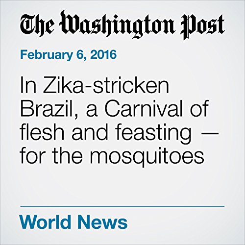 In Zika-stricken Brazil, a Carnival of flesh and feasting — for the mosquitoes cover art