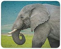 7.1 X 8.7インチのマウスパッド、雄大な象の王のマウスマットパッド-Natural World Computer Gift