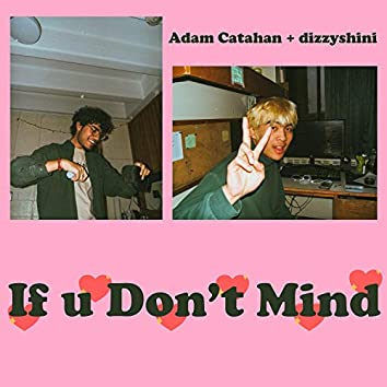 If U Don't Mind (feat. Adam Catahan)