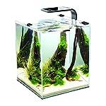 Aquael-Aquarium-Shrimp-Set-SMART-LED-komplett-Set-mit-morderner-LED-Beleuchtung