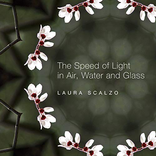 The Speed of Light in Air, Water, and Glass cover art