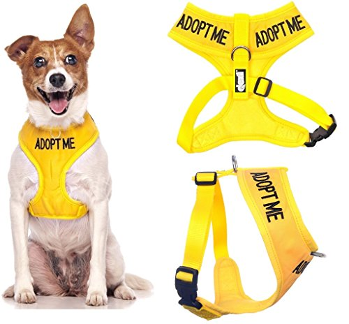 Dexil Limited Adopt ME (I Need A New Home) Yellow Color Coded Non-Pull Front and Back D Ring Padded and Waterproof Vest Dog Harness Prevents Accidents by Warning Others of Your Dog in Advance (S)