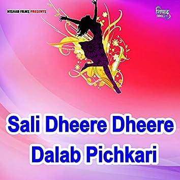 Sali Dheere Dheere Dalab Pichkari