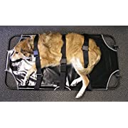 "NEW Small Pet Animal Stretcher Trolley, 180lbs Capacity, 48""L x 24""W"