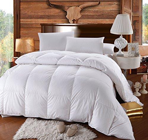 Royal Bedding Abripedic Hungarian Goose Down Comforter, Hypoallergenic,...