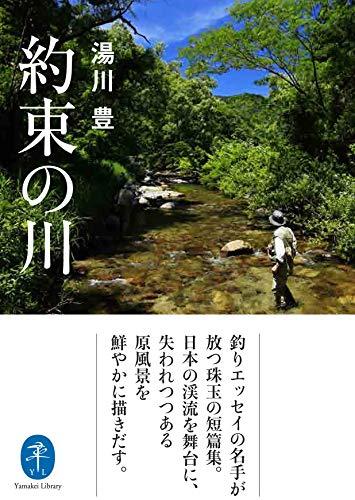 ヤマケイ文庫 約束の川