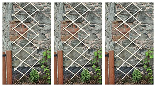 Garden Mile Set of 3 Expanding 6FT X 2FT Wooden Garden Trellis Outdoor Flexible Wood Trellis for Climbing Growing Plants & Flowers Fence Panel Gardening Decor Support Structure