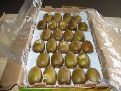 ゴールド キーウイ フルーツ ニュージーランド産 25~33玉入り