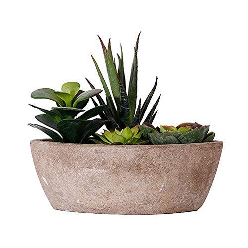 DC CLOUD Cactus Artificiales Decoracion Plantas Artificiales Decorativas Plantas faciales Interiores pequeñas Decoración de la Cocina Casa Planta