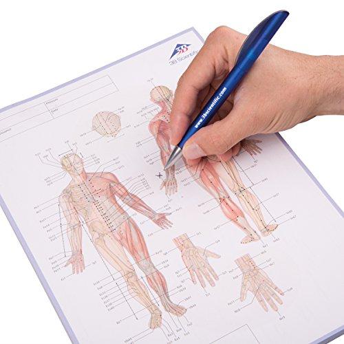 3B Scientific 1017883 Akupunktur-Meridian-Notizblock