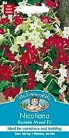 【輸入種子】 Mr.Fothergill's Seeds Nicotiana Roulette Mixed F2 ニコチアナ ルーレット・ミックス F2 ミスター・フォザーギルズシード