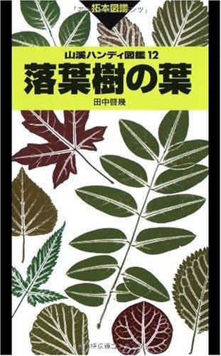 落葉樹の葉 (山溪ハンディ図鑑)
