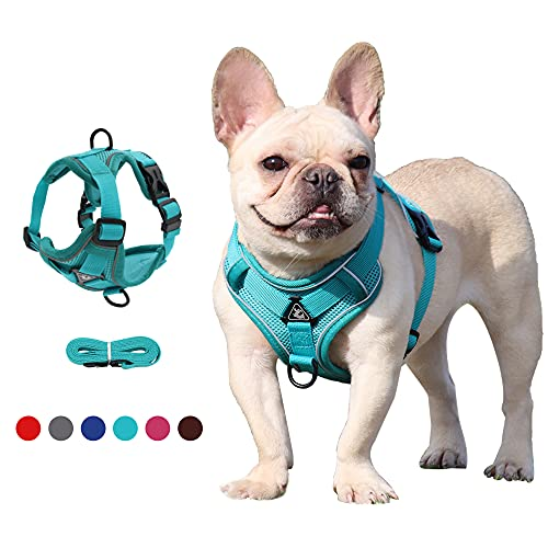 Dgndct No Pull Dog Harness—All Weather Air Mesh, Small Dog Harness and Leash Set,Adjustable Soft Padded Dog Vest, Reflective Pet Harness for Small/Medium Dogs and Cats(Green-M)