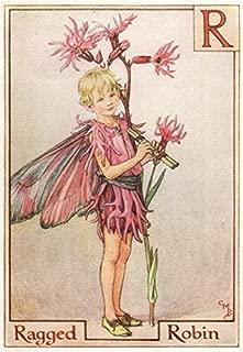 R = Ragged Robin Fairy by Cicely Mary Barker. Alphabet Flower Fairies - c1934 - old print - antique print - vintage print - Flower Fairies art prints