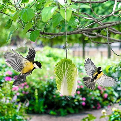 DaMohony Vogelfutterhalter 2 Stück Edelstahl Obst Gemüse Stick Halter Vögel Hängen Feeder Spielzeug