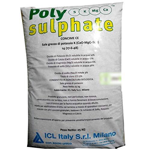 ICL POLYSULPHATE Concime CE Sale Grezzo di potassio 25 kg con zolfo, potassio, magnesio, Calcio
