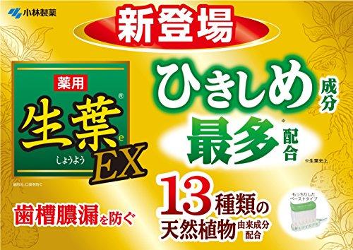 生葉EX(しょうようEX)歯槽膿漏を防ぐ薬用ハミガキハーブミント味100g【医薬部外品】