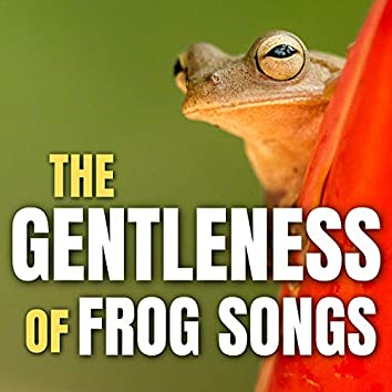 The Gentleness of Frog Songs