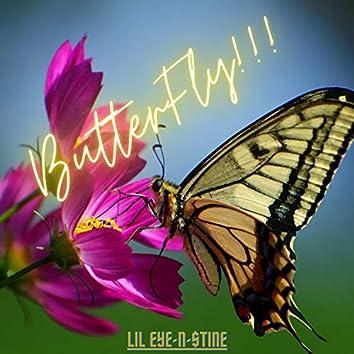 ButterFly!!!