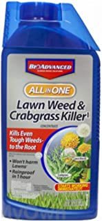 BioAdvanced All-in-One Lawn Weed & Crabgrass Killer 32 oz Concentrate for Dandelions, Crabgrass & Clover
