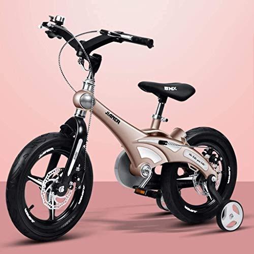 2021 New Triciclo Triciclo para niños Cómoda bicicleta para niños, niña 14/16 pulgadas Bicicleta para bebés 2-3-6 años Bicicleta para carro de bebé Cómoda Triciclo para bebés Cochecito para niños Sill