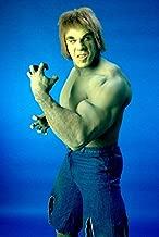 Lou Ferrigno The Incredible Hulk 18x24 Poster