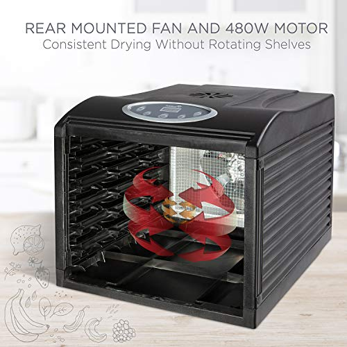 Ivation 6 Tray Countertop Digital Food Dehydrator Drying Machine 480w with Preset Temperature Settings, Auto Shutoff Timer and Even Heat Circulation for Beef Jerky, Fruits, Vegetables & Nuts