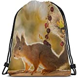Yuanmeiju Bolsa de cordón para Dibujar,Saco de Gimnasia con cordón,Close Up of Red Squirrel Standing On A Branch with Sport Gym Bag For Men Sport Goodie Bags Cinch Packs For Men