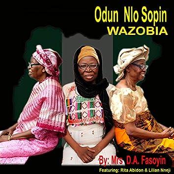 Odun Nlo Sopin Wazobia