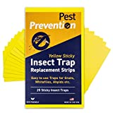 25 Yellow Sticky Strips for GNAT Killer Trap | Replacement Strips | Fungus Gnat Killer | Gnat Control Outdoor Trap | Whitefly | Aphid | 25 Replacement Strips