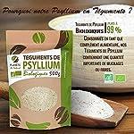 Psyllium Bio (téguments) - 500 g #3