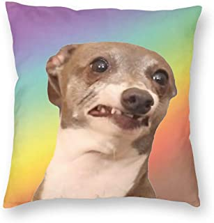 Kermit-Dog Square Pillow Throw Case Pillow Covers Set Cushion Hold Pillowcase Sofa Bed Home