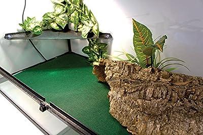 Komodo Reptile Carpet Habitat Substrate for Tortoises, Dragons, Geckos, Snakes (60 x 50 cm Carpet) from Komo-do