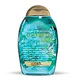 Ogx Intensely Invigorating Eucalyptus Mint Shampoo With Tea Tree Oil, 13 oz