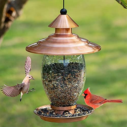 Birdream Glass Bird Feeder for Outside, Squirrel Proof Bird Feeders Metal Waterproof Outdoor Hanging for Garden Yard Decoration