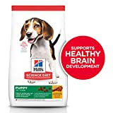 Hill's Science Diet Dry Dog Food, Puppy, Chicken Meal & Barley Recipe, 30 lb Bag, (Model: 9367)