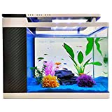 EMOSN 5 Gallon Aquarium Starter Kits, Ultra Clear Fish Tank with Multi-Mode LED Lighting and Hidden Filtration System, Exquisite Aquarium with Filtration Material, Filter Water Pump…