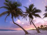 YYone 500 Piece Wooden Jigsaw Puzzle Beach Palm Trees Sand Sky Sunset Large Puzzle Game for Adults and Teenagers