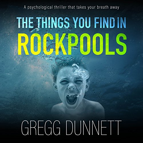 The Things You Find in Rockpools audiobook cover art