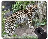Alfombrilla de ratón Gaming, Leopardo Salvaje Leopardo Antideslizante con Base de Goma