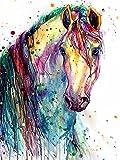Xykhlj Pintar por Números - Animales - Caballos de Colores - Lienzo preimpreso - Home Décor Pintura al óleo - Arte de Lona para el hogar Decorati - 40x50cm - (Marco de Bricolaje)