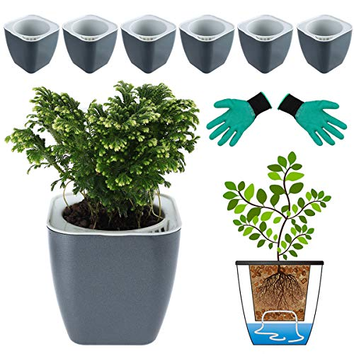 DeEFL 6 Packs 5 Inches Self Watering Planters Plastic Self Watering Pots Wicking Flower Pots for Indoor Plants, African Violet, Ocean Spider Plant, Orchid, Black Gold