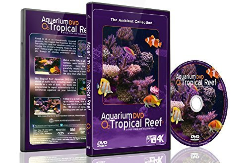 Aquarium DVD - Tropical Reef Aquarium Filmed In HD - With Natural Sound And Relaxing Music